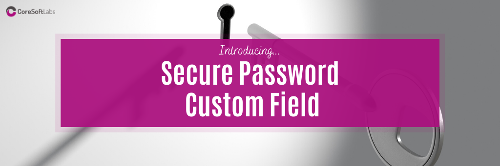 Learn More about the Password Custom Field Details